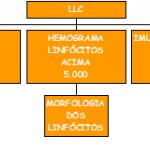 Diagnóstico da LLC